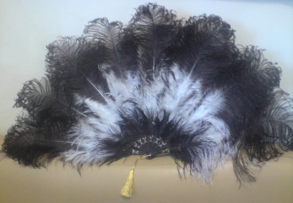Поделка из перьев страуса 99